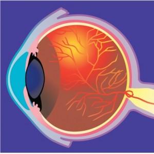 enfermedades de la vista