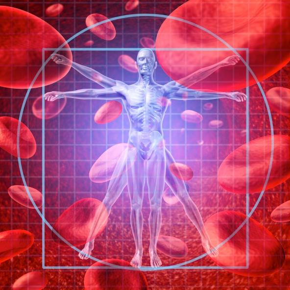 El riesgo cardiovascular puede predecirse chequeando el colesterol bueno