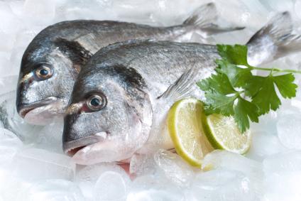 El pescado y el embarazo – ¿ni mucho, ni poco?