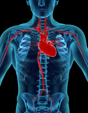 8 Consejos para reducir el riesgo de desarrollar la enfermedad de las arterias coronarias (del corazón)