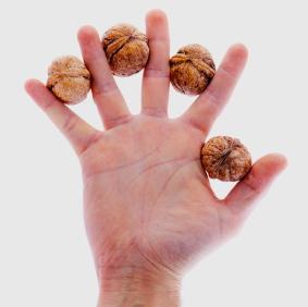 Un puñado de nueces, por favor – éstas parecen mejorar la calidad del semen y la fertilidad masculina
