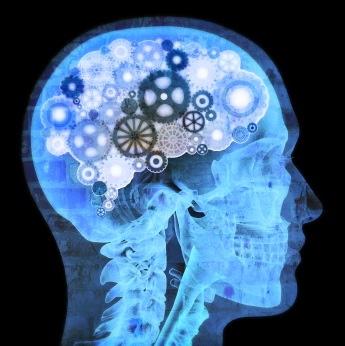 El ejercicio protege al cerebro que envejece