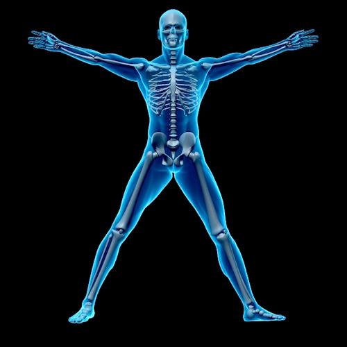 El ejercicio: una forma estupenda de fortalecer huesos y articulaciones