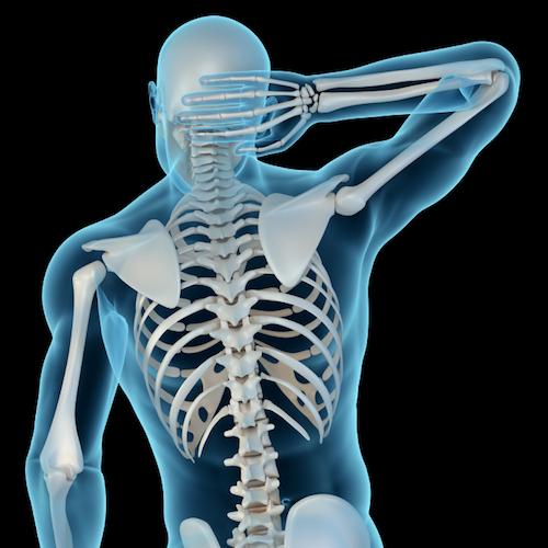 El calcio y la vitamina D: necesarios para tener huesos fuertes